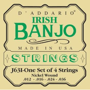 DAddario J63I Irish Banjo